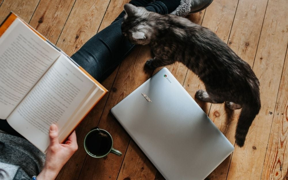 A small cat waking through a notebook and a person reading with a book in front and a cup of coffee into the wooden floor.