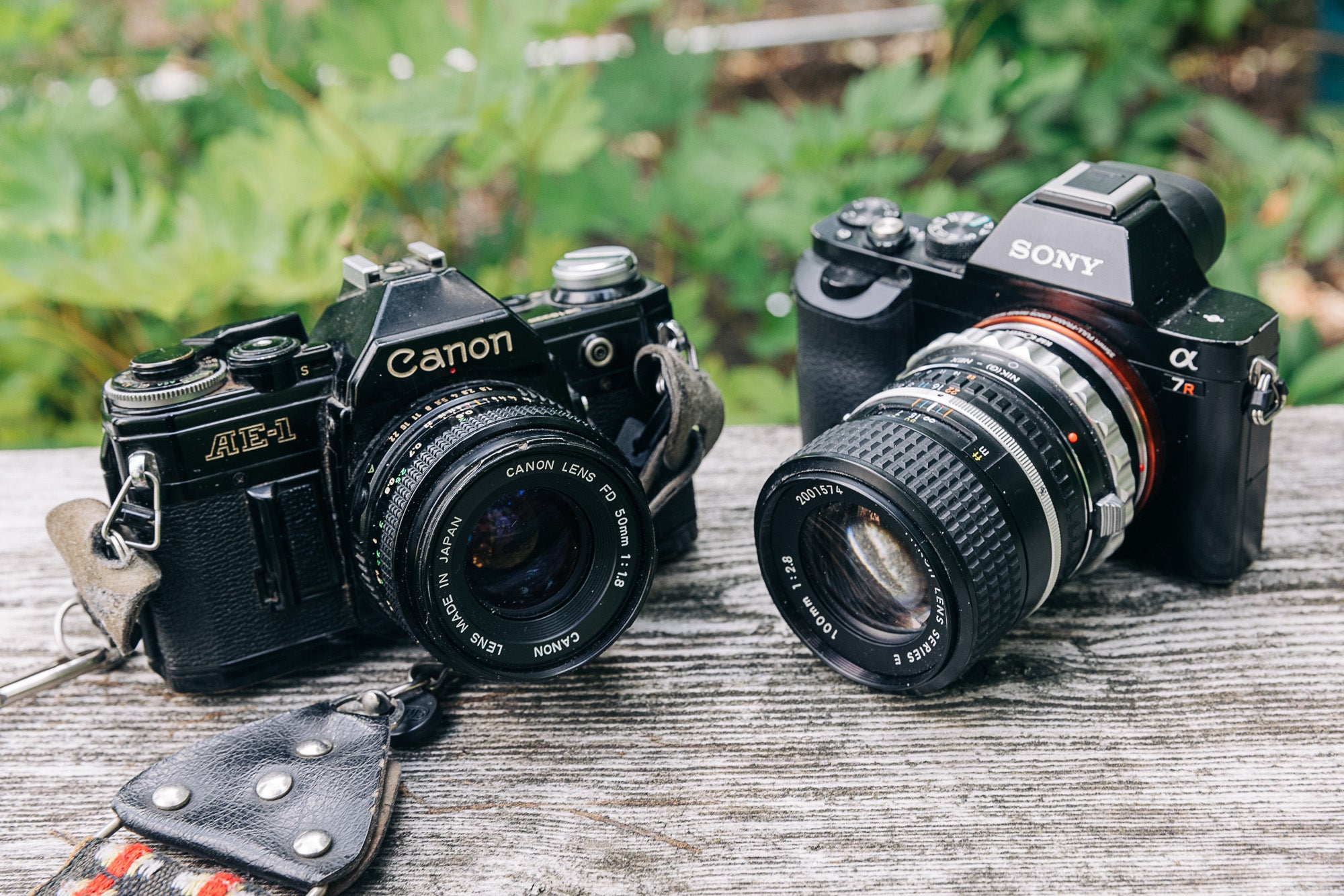 A sony a7r with an vintage lenses and canon AE-1 cameras