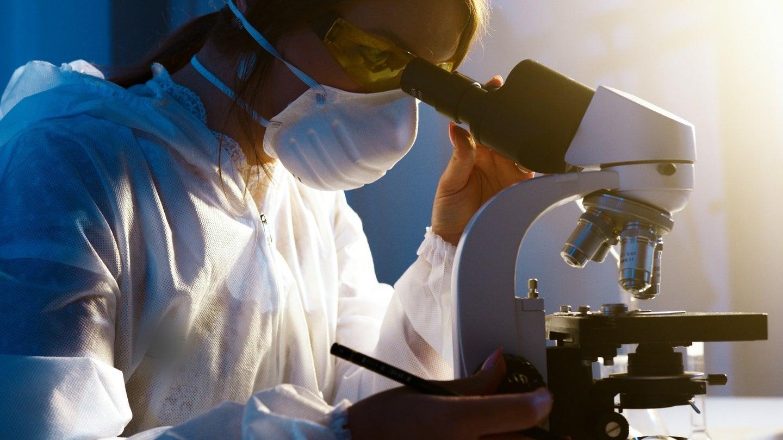A scientist looks through a microscope.
