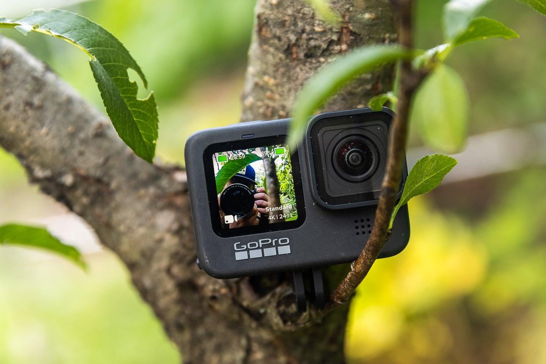 GoPro Hero 9 Black main in a tree