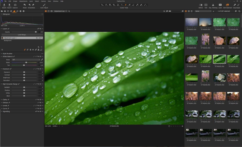 Capture One Pro editing
