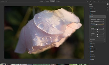 Luminar AI review: Algorithms take your photos to weird—and sometimes wonderful—places