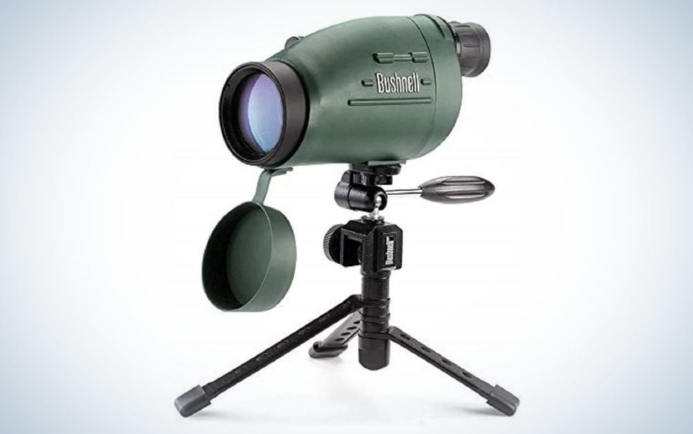 The Bushnell Ultra Compact Spotting Scope is the best budget pick for value.