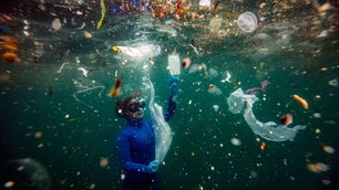 New danger to underwater life as medical waste used during the pandemic reaches the seas